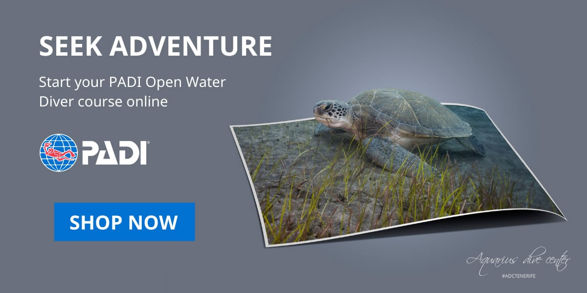 PADI eLearning open water diver