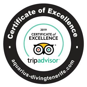 Tripadvisor Certificate of excellence 2019.fw