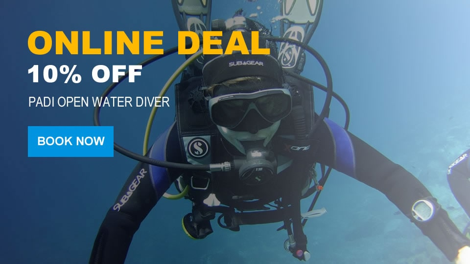 padi open water diver offer