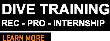 dive training tenerife